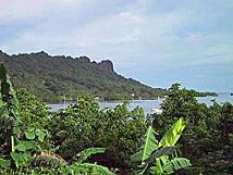ミクロネシア 連邦 ポンペイ 島.jpg