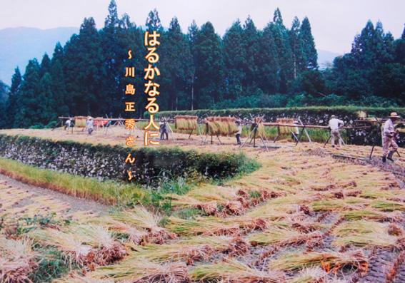 川島表紙.jpg